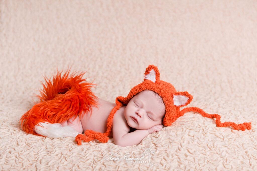 photographe montpellier bebe renard