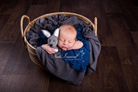 photographie bebe dans un panier avec lapin