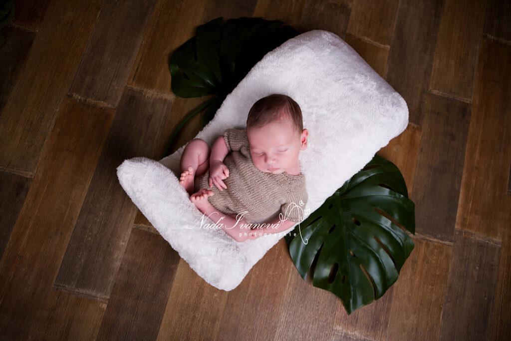 photo bebe avec grande feuille