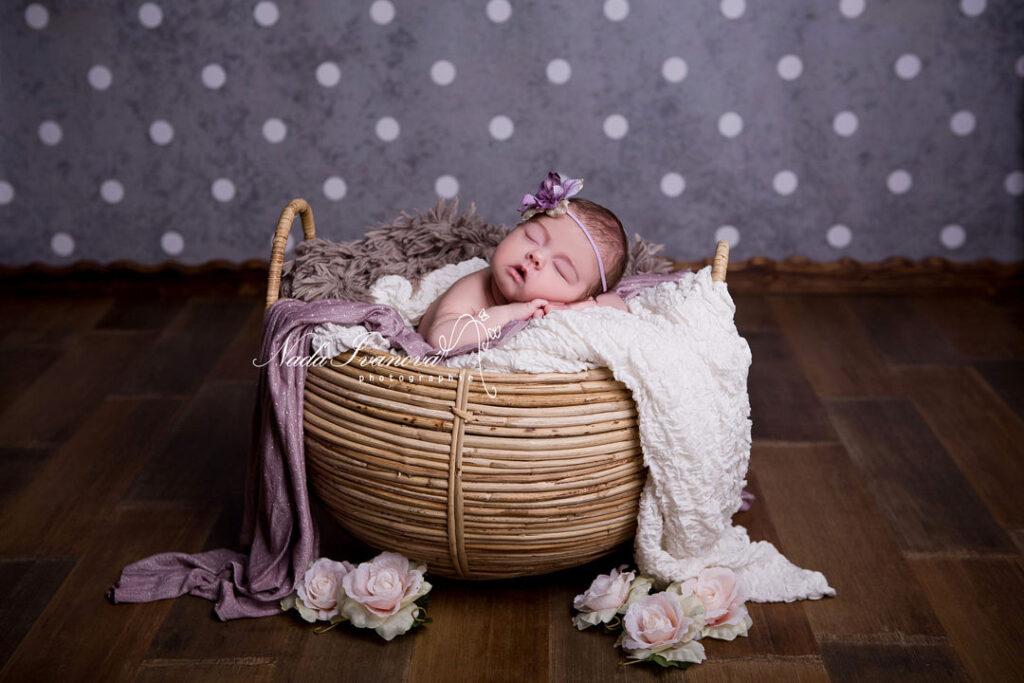 photographe bebe beziers dans un pannier